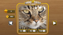 jigsaw puzzle lassic