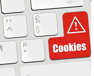 Informativa sui cookies