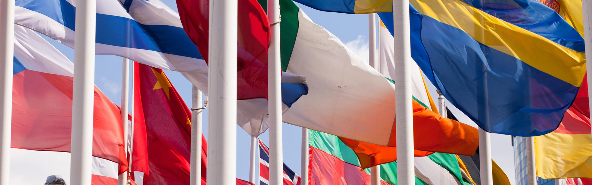 Contatore Bandiere gratuito professionale