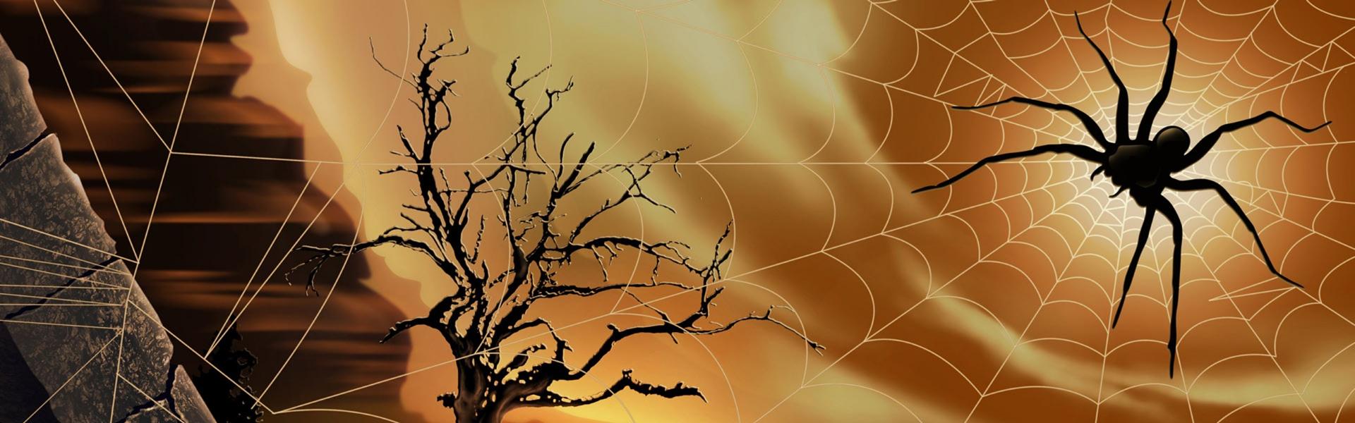 Foto profilo Halloween
